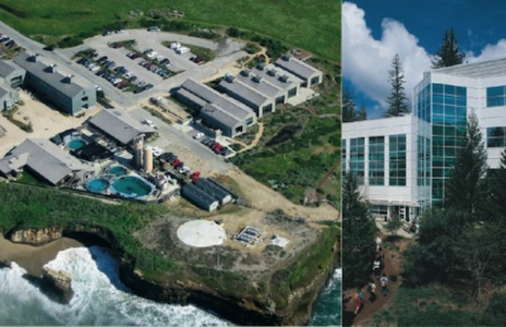 split image of coastal sciences campus and earth and marine sciences