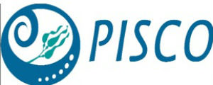 PISCO logo graphic