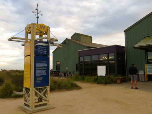 image of seymour marine discovery center