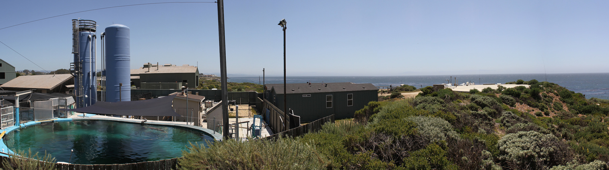 Coastal Science Campus overlook