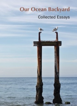 image of book cover, our ocean backyard